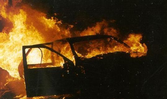 Активістці, яка боролась проти вирубки лісу спалили вже друге авто!  Деталі наводять жах!