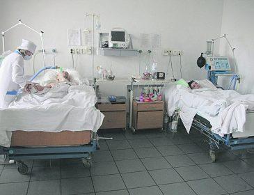 ТЕРМІНОВО!!! В Україні лютує страшна епідемія сказу, яка завжди закінчується смертю