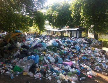 МІСТО ПОТОПАЄ!!! Моторошні фото сміттєвих завалів у Львові!! Такого Ви не побачите більше ніде!