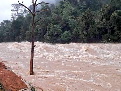 Страшні повені і зсуви забрали життя 169 людей (шокуючі кадри)