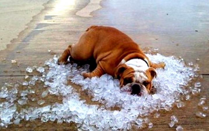 Запасайтесь водою: З 31 липня на Україну насувається неймовірна спека. Прогноз синоптиків ШОКУЄ не на жарт!
