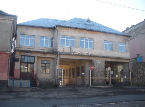 Взяла задарма. Скандальна депутатка Львівської міської ради привласнила цілий завод