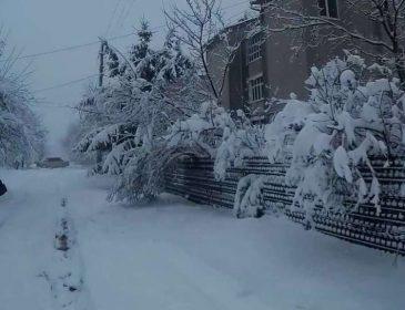 Це якась кара небесна! Дощ перетворився в сніг! Санкт-Петербург просто засипало (ВІДЕО)