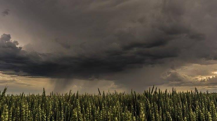 ТЕРМІНОВО! Штормове попередження! На 8 областей України насувається щось страшне. Найбільше в небезпеці…