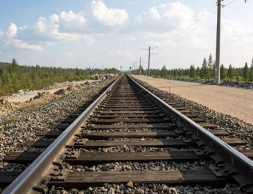 Це пекельна смерть!!! На Львівщині потяг переїхав жінку, від подробиць мороз по шкірі