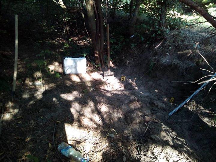 Після інтиму задушив і закопав у лісі: Моторошне вбивство на Львівщині сколихнуло цілу область. Деталі жахають