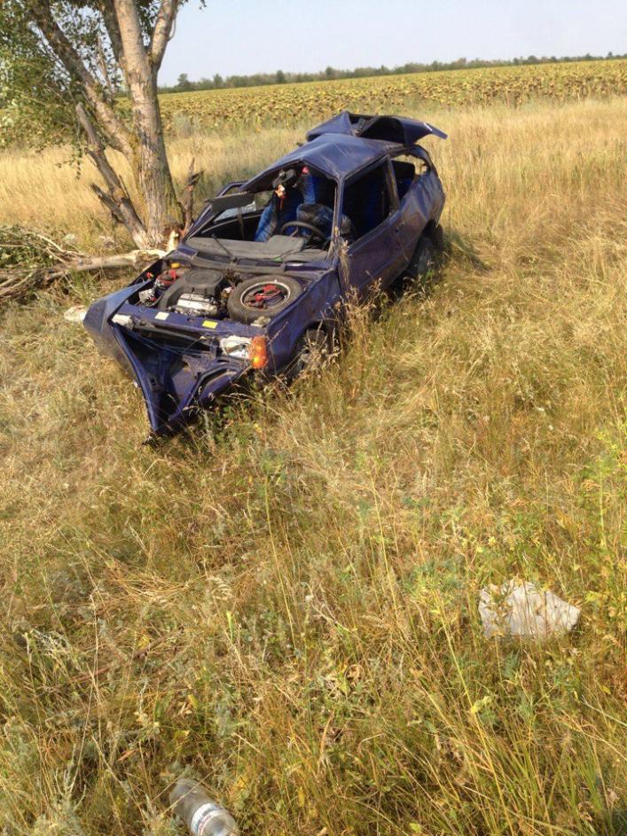 """""""Тричі перевернувся в повітрі і врізався в дерево"""": Страшна ДТП, в якій від автомобіля майже нічого не залишилось"""