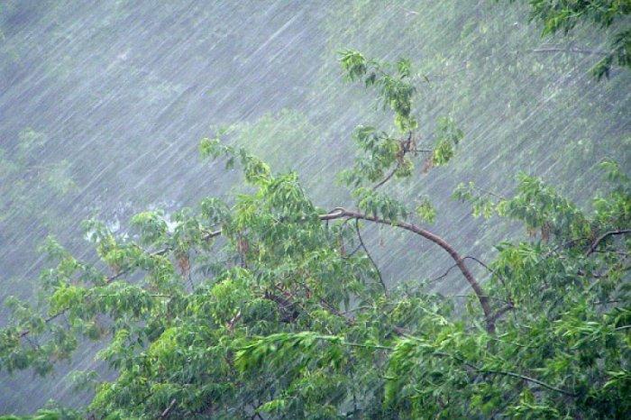 Утепляйтеся!!! Синоптики попереджають львів'ян про значне погіршення погодних умов