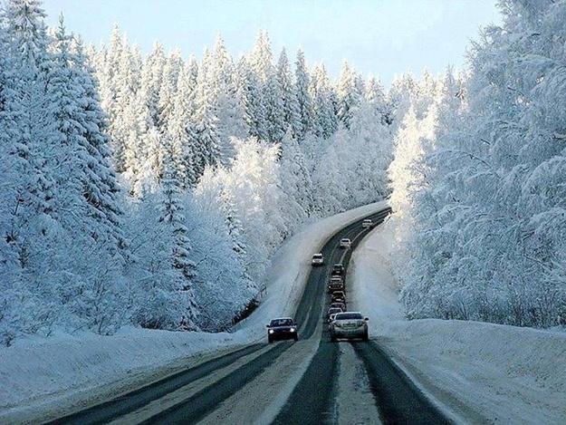 Весна у грудні: Чим загрожує плюсова температура