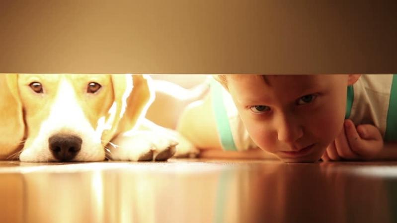 """""""Просто не хотів йти до школи"""": У Львові поліція розшукала зниклого 10-річного хлопчика, він був """"під носом"""" у батьків"""