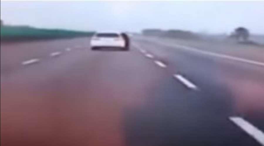 """""""Заявила, що не хоче…"""": Дівчина на ходу вистрибнула з машини. Відео страшної трагедії"""