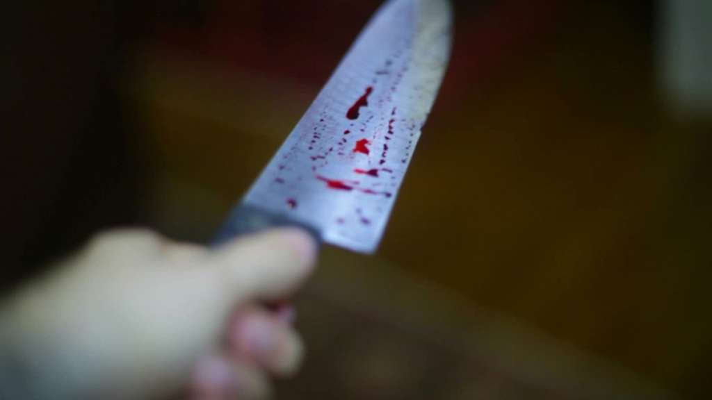 """""""Вбив чоловіка і сплячу дитину на очах у вагітної матері…"""": Школяр влаштував криваву різанину в будинку сусідів"""