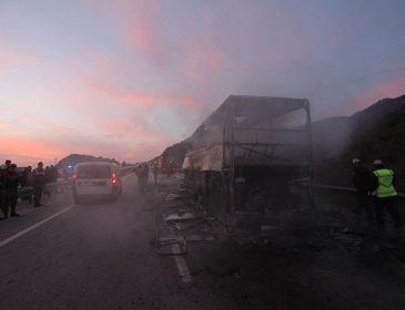 """""""Загинули як мінімум 13 осіб, 20 отримали поранення…"""": Пасажирський автобус на повній швидкості протаранив фуру"""