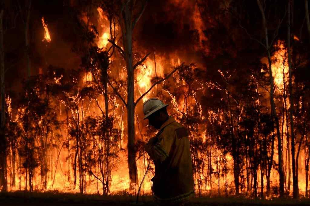 Сотні знищених будинків і два людських життя: лісові пожежі набирають сили