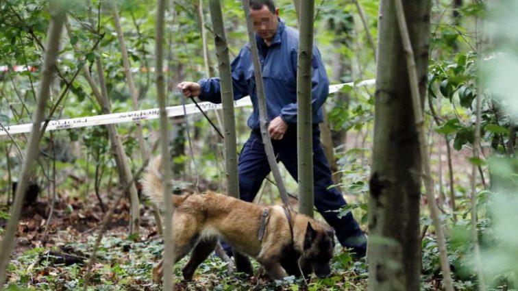 Її шукали три тижні: в одній з лісосмуг знайшли повішене тіло випускниці