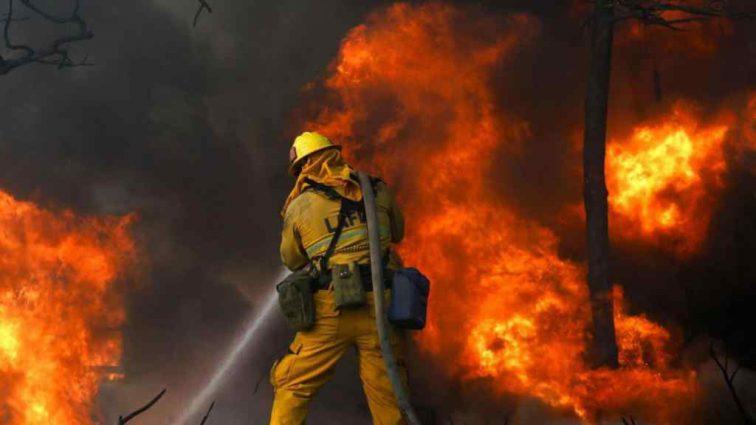 Під Києвом спалахнула масштабна пожежа, з'явилися нові подробиці
