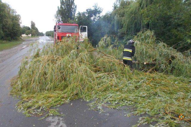 Сильні зливи на заході України: вітер ламав дерева і зносив дахи