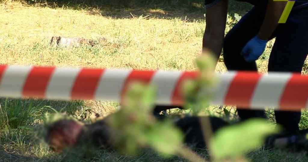 """""""На тілі та голові були численні сліди побоїв"""": В полі виявили тіло дівчини, яку побили до смерті та жорстоко зґвалтували"""