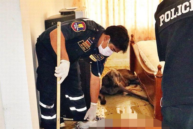 Чоловік помер і залишився на поталу голодному собаці. Поліція застала шокуючу картину