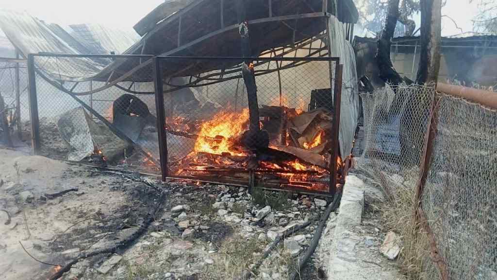 На відомому українському курорті сталася масштабна пожежа, є постраждалі