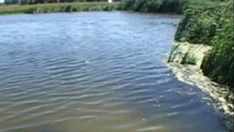 Такого мешканці ще не бачили: масштабна повінь накрила Харківщину