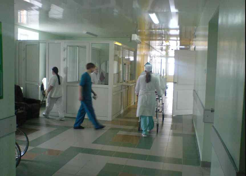 На Львівщині 4-річна дитина опинилася у реанімації після укусу змії