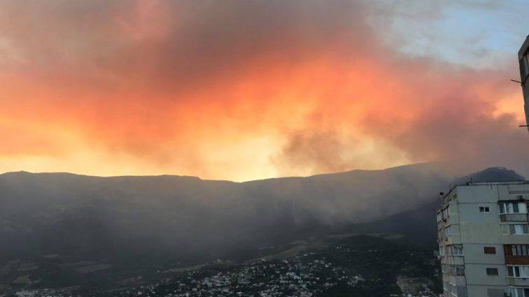 """""""Останнє коло пекла"""": В Кримському лісі спалахнула масштабна пожежа"""