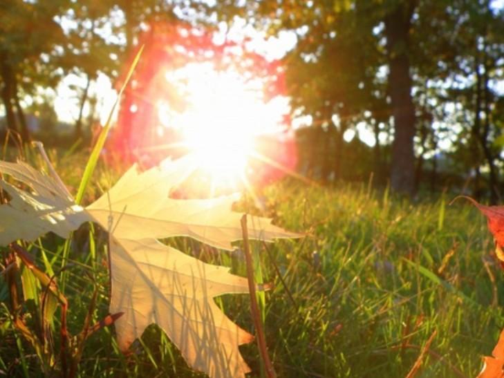Буде по-літньому тепло: Синоптики розповіли, яких сюрпризів від погоди варто очікувати 14 вересня