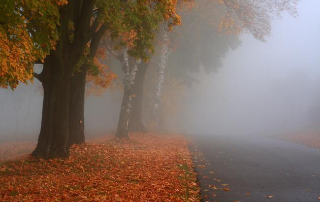 Тумани та невеликий дощ: Синоптики розповіли, яких сюрпризів від погоди слід очікувати 13 вересня