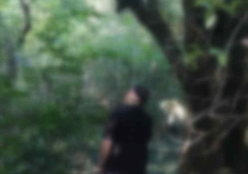 У парку висів на одній з гілок: знайшли тіло колишнього глави відділу по боротьбі з економічними злочинами