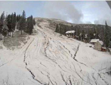Карпати замело снігом: перші подробиці та фото аномальної погоди