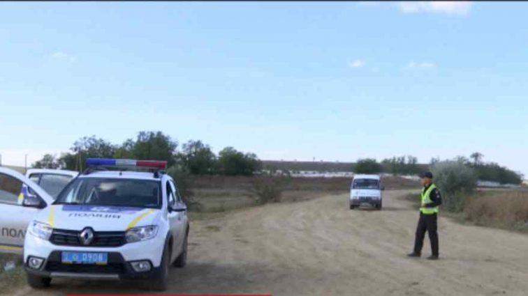 В Україні зафіксували новий спалах сибірської виразки: ціле село закрили на карантин