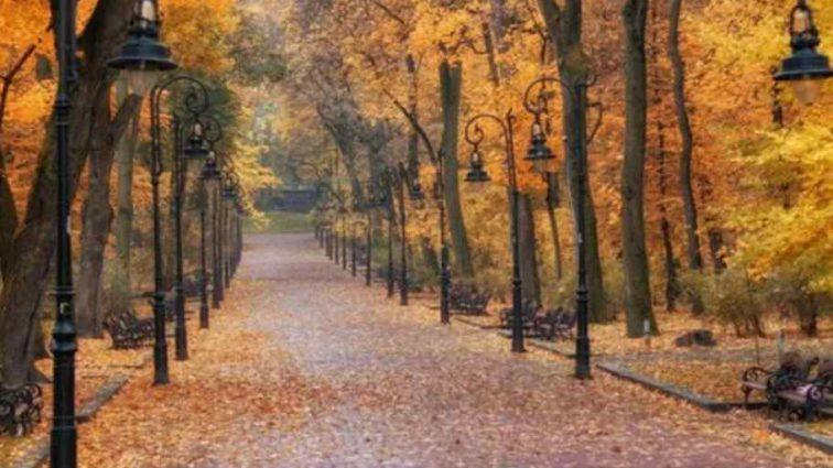 Україну накриють дощі та холод: що обіцяють синоптики нам на понеділок, 22 жовтня