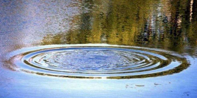 Страшна знахідка: На Прикарпатті у річці виявили тіло 17-річної дівчини