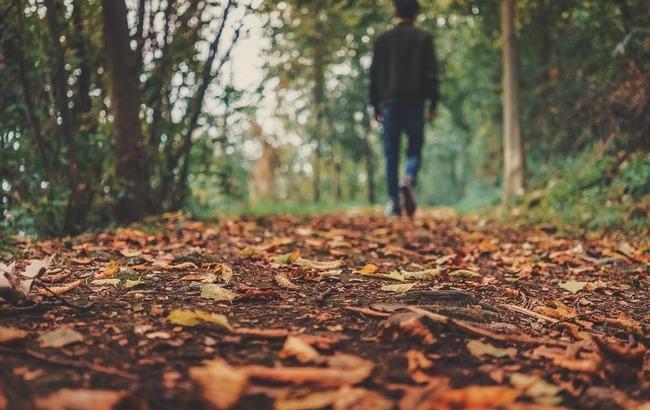 Теплі дні закінчились: Синоптики попередили про істотне похолодання 7 листопада