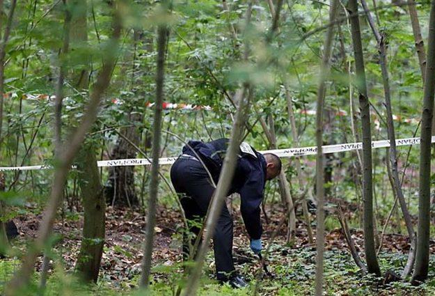 Тіло було заховано в кущах: Напередодні Дня народження знайшли вбитою доньку відомого мільйонера
