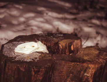 Тіло лежало під деревами: У Києві знайшли труп чоловіка
