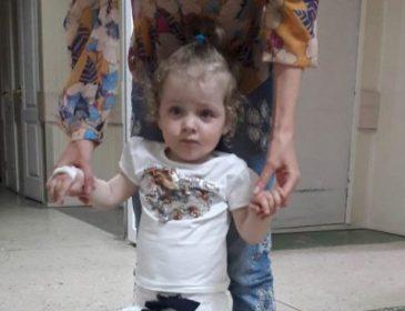 Наступного нападу дівчинка може не пережити: допоможіть Ганні зберегти життя