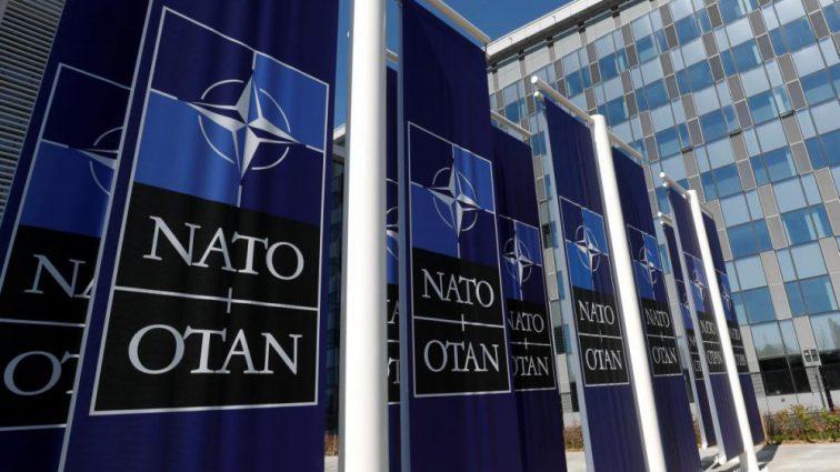 Україна вже мала би бути в НАТО! Климпуш-Цинцадзе зробила неочікувану заяву