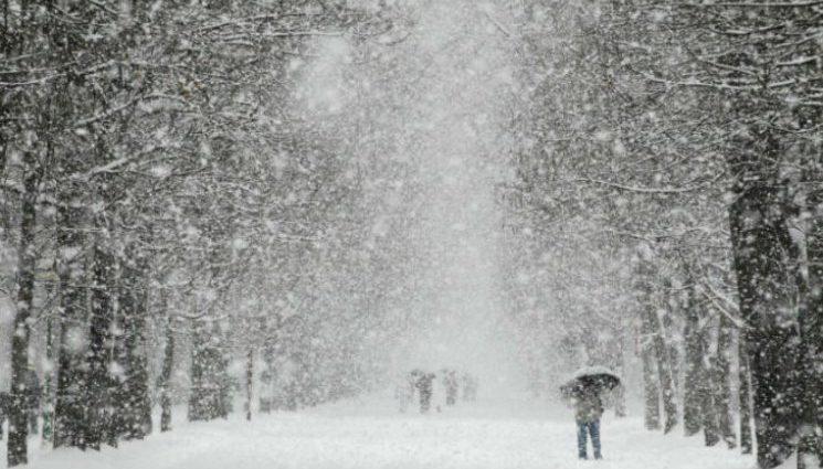 Хуртовини та шквали вітру: Прогноз погоди на 12 січня