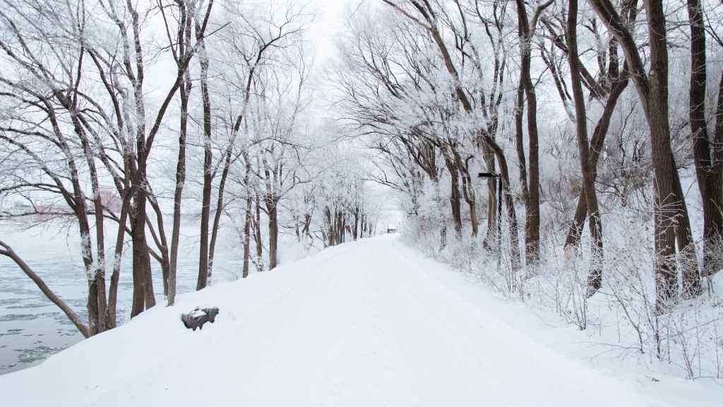 Таких морозів не було давно: Прогноз погоди на 25 січня