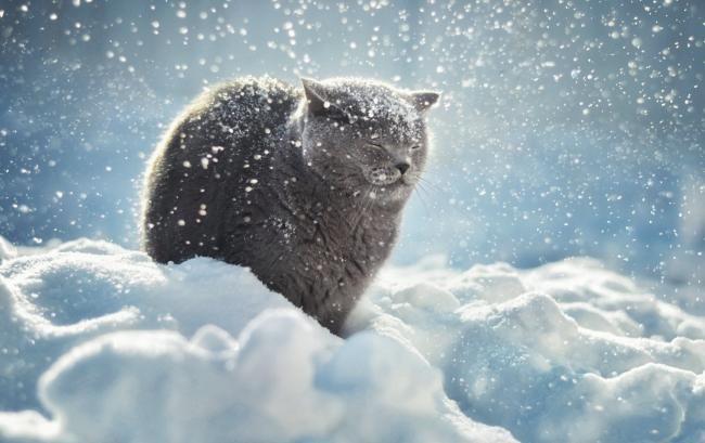 Яким буде останній день зими? Погода по Україні