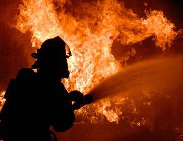Трагедія в Одесі: Внаслідок масштабної пожежі загинуло подружжя
