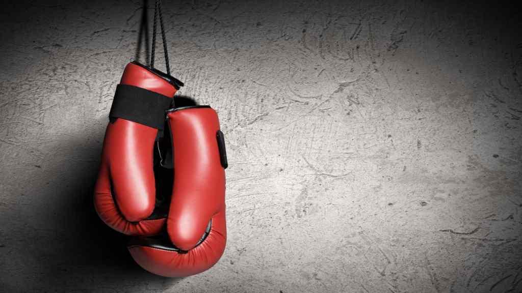 Український важковаговик виграв бій нокаутом