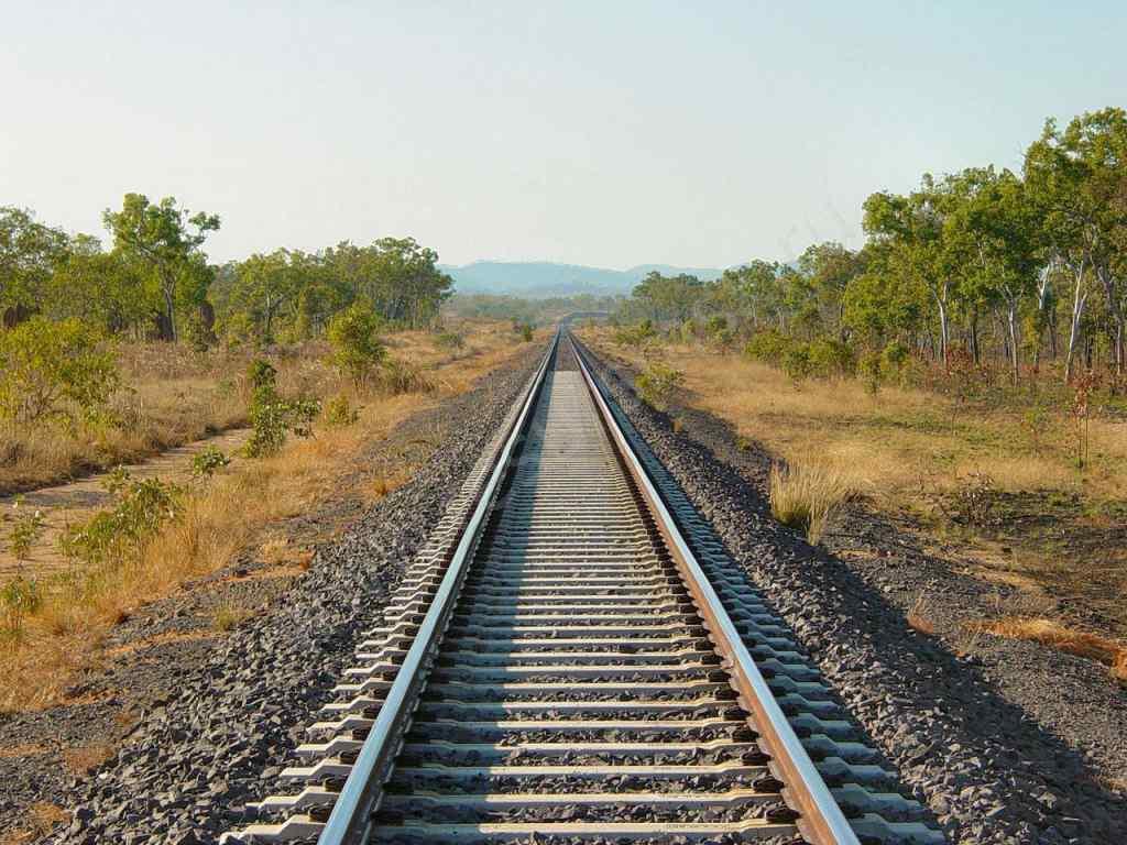 """Нерухомо лежала біля рейок: дівчина """"випала"""" з їдучого на повній швидкості поїзда"""