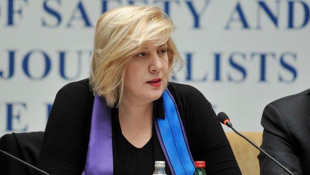 """""""Є багато питань"""": в Раді Європи вирішили відправити представника в окупований Крим"""
