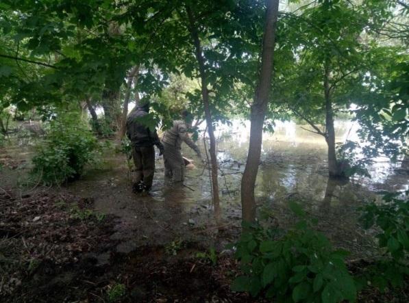 Десять годин хвора дитина чекала маму на березі: жахливе самогубство приголомшило Україну
