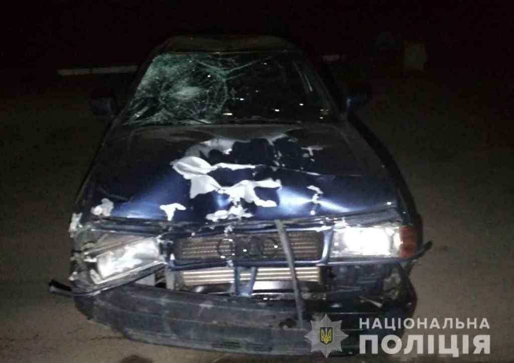 Серед жертв дитина: На Запоріжжі водій в наркотичному стані на смерть збив двох велосипедистів