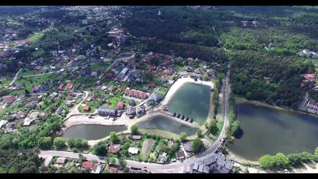 Операція «Брюховичі»: Кабмін віддасть 125 гектарів землі у лісі біля Львова під забудову