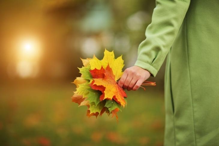 Осінь наступає на п'яти: синоптики спрогнозували поступове похолодання. До+5 градусів!